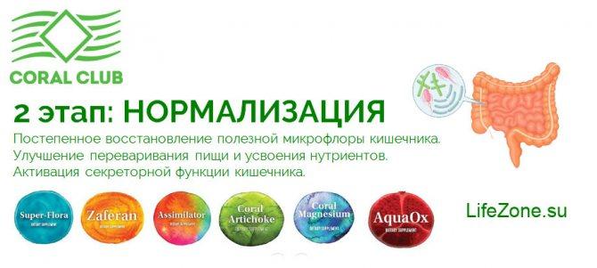2 етап програми «Здоровий кишечник»: НОРМАЛІЗАЦІЯ РОБОТИ КИШЕЧНИКА