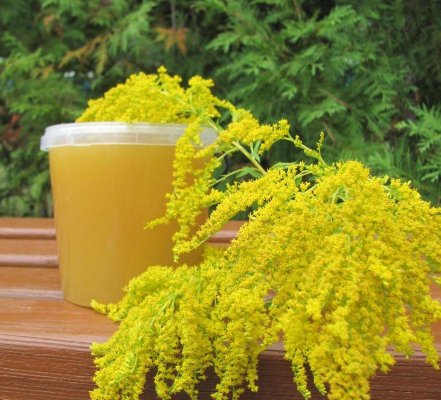 Рецепти для здоров'я меду золотушника