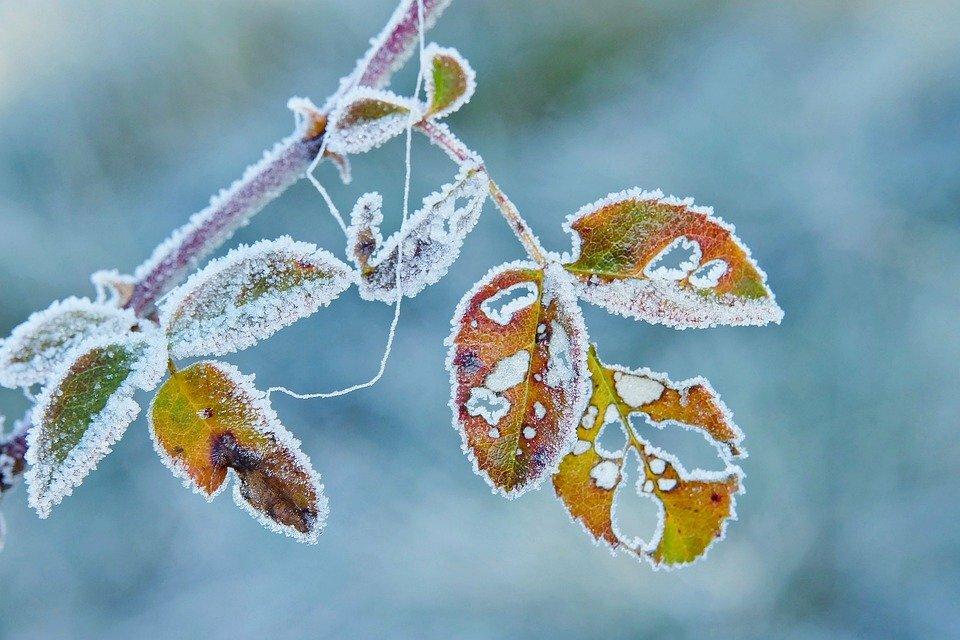 Народні прикмети на удачу і благополуччя 15-16 листопада Загадуємо бажання на Житницю
