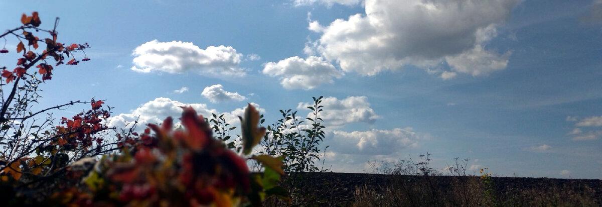 Народні прикмети на удачу і благополуччя 10-11 вересня. День Іоанна Предтечі - заборони та забобони