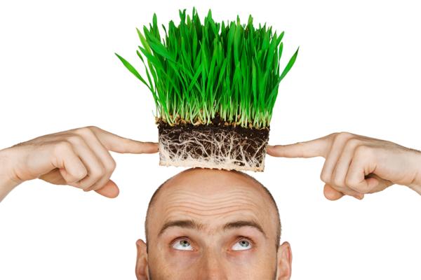 Корисні хитрощі для волосся: міфи і правда
