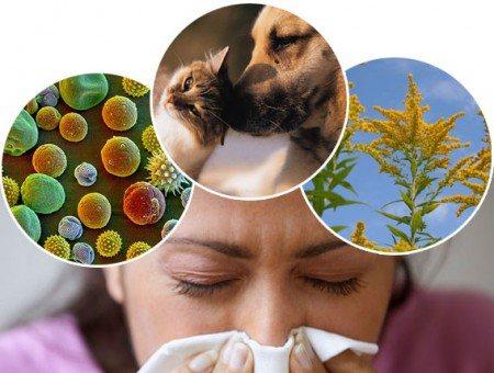 алергічний трахеобронхіт