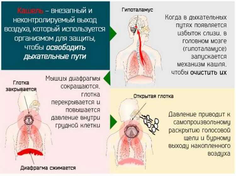 алтей сироп від кашлю інструкція для дітей