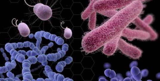 Антибіотики останнього покоління широкого спектра дії