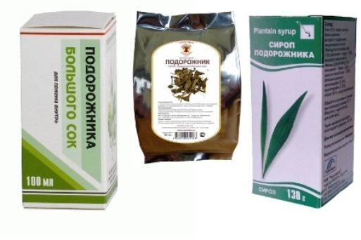 Аптечний сироп подорожника - користь, інструкція із застосування