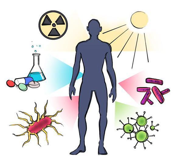 аутоімунний процес в організмі