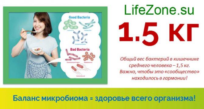 Баланс мікробіома = здоров'я всього організму