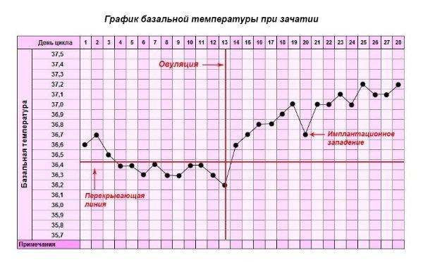 базальна температура графік