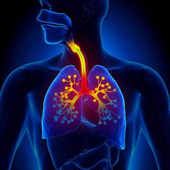 хвороба легенів