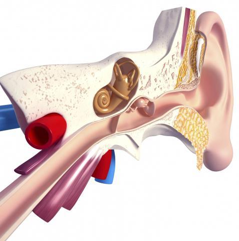 хвороби вуха