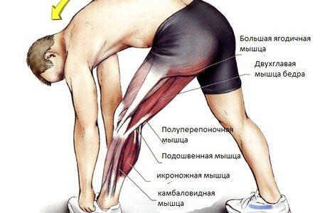 Болить чашечка колена