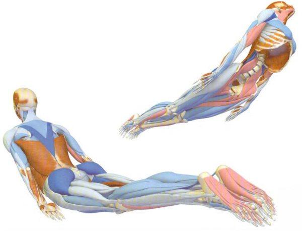 Болить куприк. Причини у жінок при сидінні, коли встаєш, що віддає біль в сідницю, ногу, пах. лікування