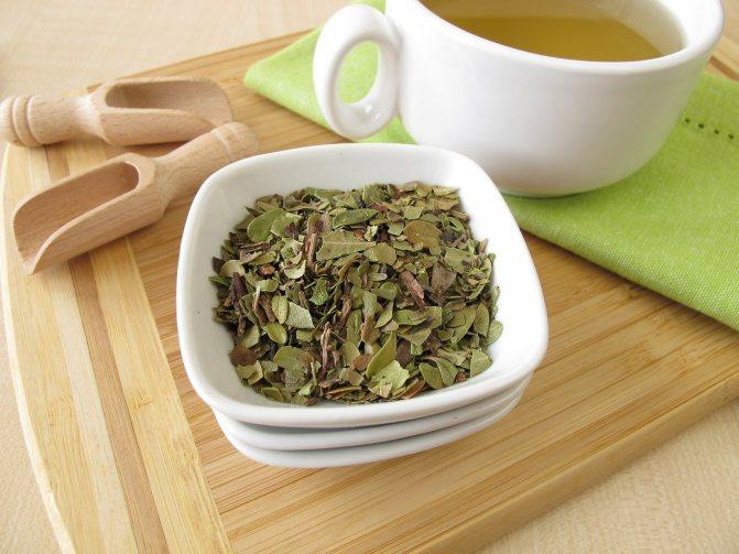 Чай з листя мучниці