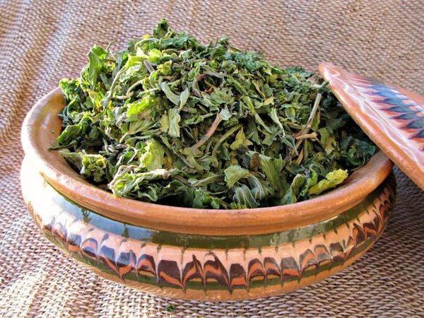 Чай з пустирника для гарного сну і зміцнення нервової системи