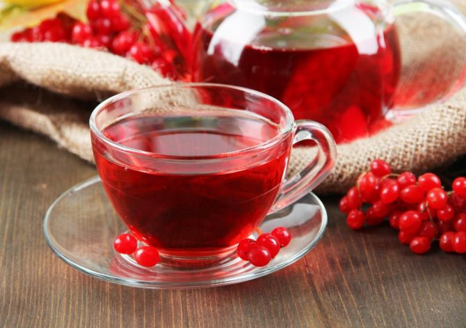 чай з плодами калини после мікроінсульту