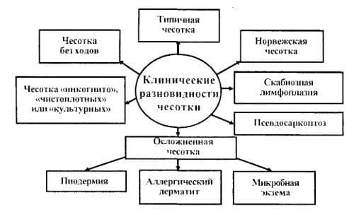 короста Симптоми