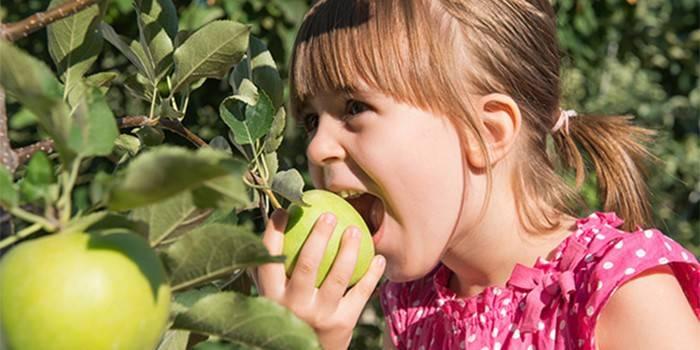 Дівчинка їсть яблуко з гілки