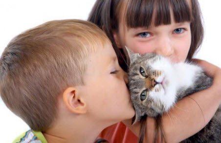 дівчинка, хлопчик, кішка, бронхіальна астма у дітей