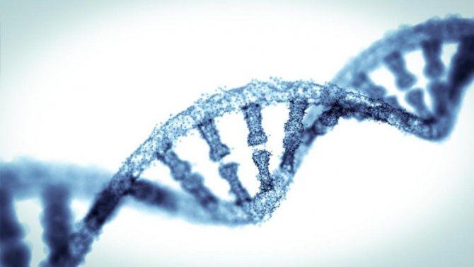 діагностика генетична