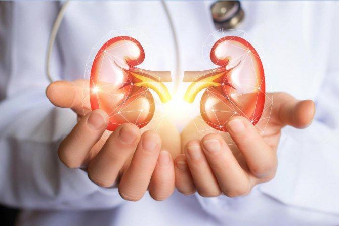 Діагностика та лікування хронічного пієлонефриту