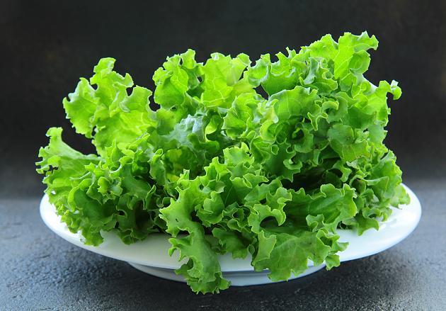дієтичні салати при панкреатиті рецепти