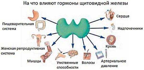 Еутірокс.  Відгуки, побічні ефектів, передозування.  Як прійматі таблетки для схуднення, при вагітності, гіпотіреозі