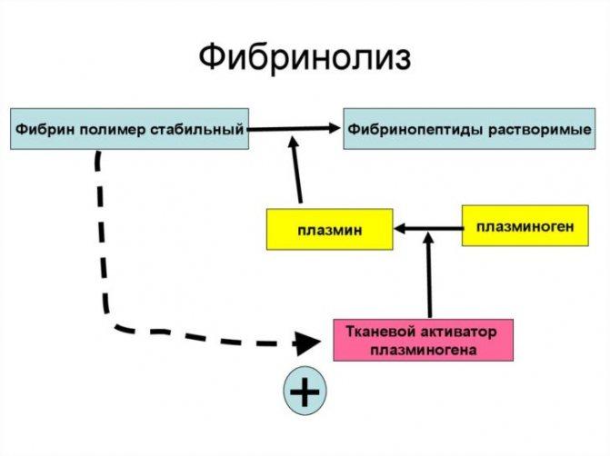 фібриноліз