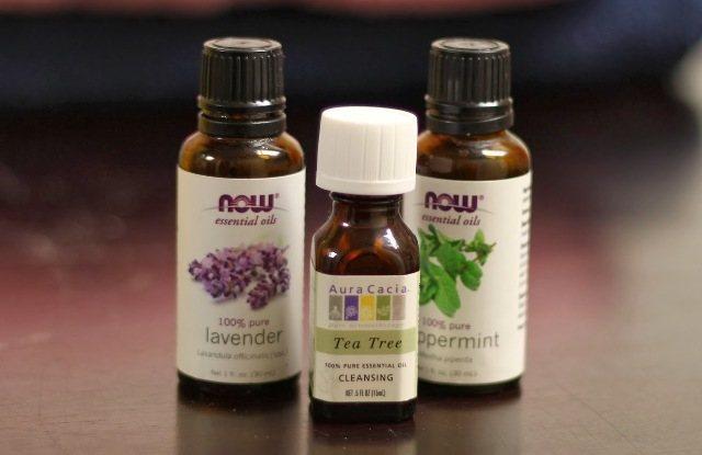 ФІРН масло лаванди або ефірну олію чайного дерева