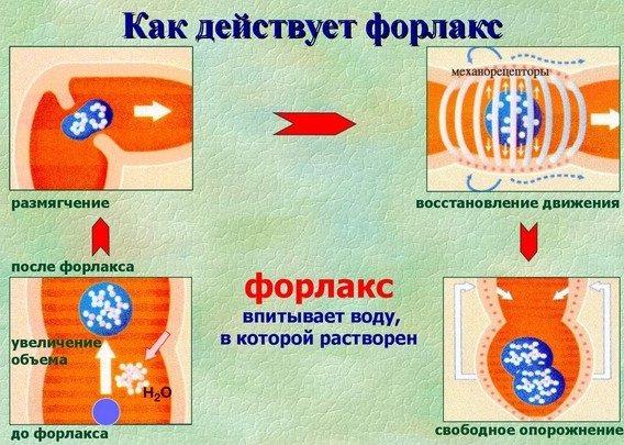 Форлакс для очищення кишечника. Відгуки, інструкція перед колоноскопією, рентгеном, при грудному вигодовуванні