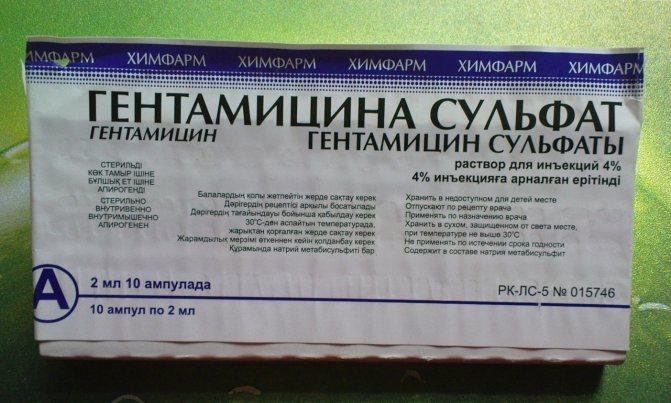 Гентаміцин: інструкція із застосування мазі і уколів, порошку і очних крапель