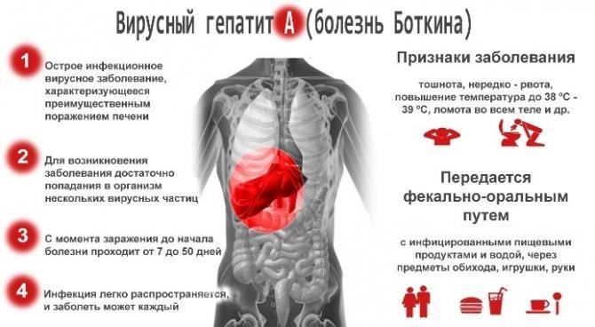 Гепатит А. Як передається від людини до людини, чим небезпечний, симптоми і лікування