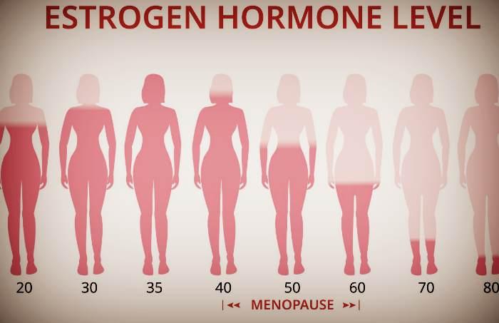 Гормон естроген при менопаузі