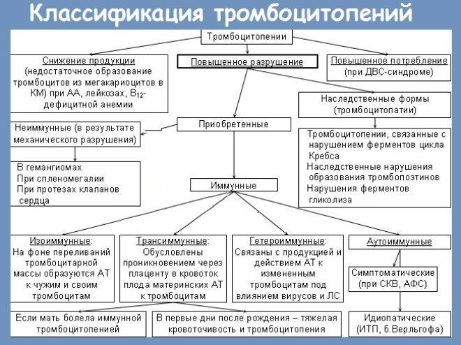 імунна тромбоцитопенія