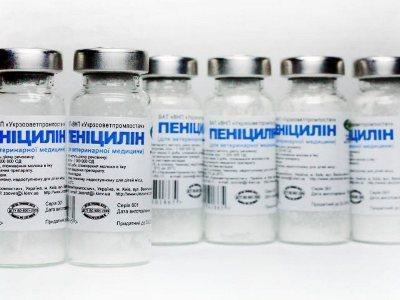 Інфекційний неспецифічний поліартрит - причини, симптоми, лікування медикаментами і народними засобами