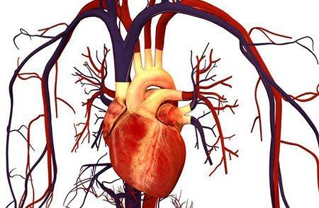 Зміна показників біохімії крові при інфаркті міокарда