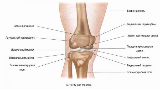Як лікувати перелом виростків великогомілкової кістки