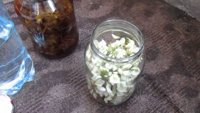 Як зробити настоянку на квітках білої акації