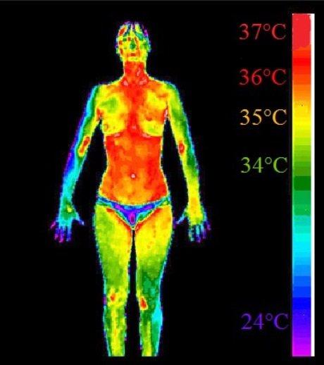 яка нормальна температура тіла людини