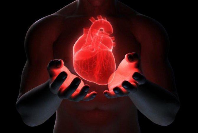 Клапан мітральній и аортального