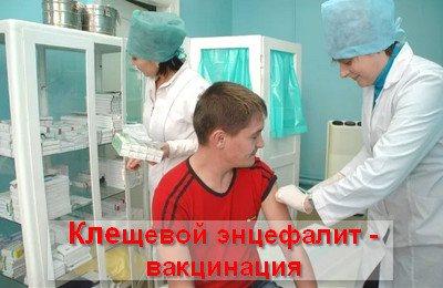 кліщовій Енцефаліт вакцинація