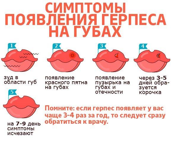 Шкірні хвороби у людини. Види, симптоми, фото і опис. Лікування народними засобами, препарати