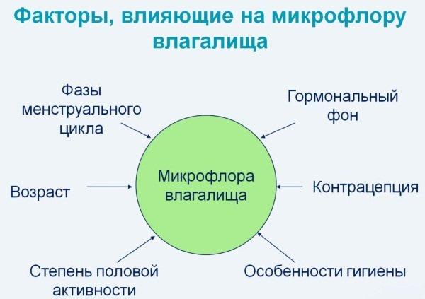 Лактобактерії для жіночої мікрофлори. Норма, таблетки, свічки, препарати при вагітності