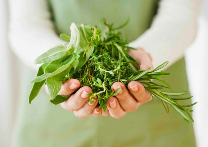 Лікування алергії народними засоби