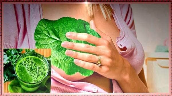 Лікування мастопатії у жінок, компреси на груди