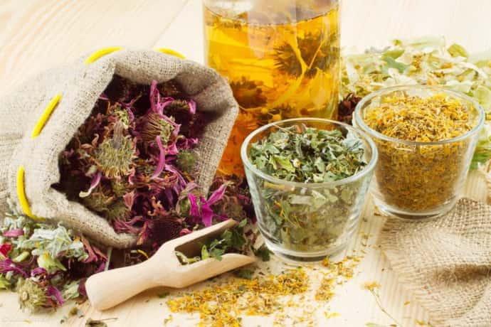Лікування жовчного міхура народними засобами: найефективніші рецепти