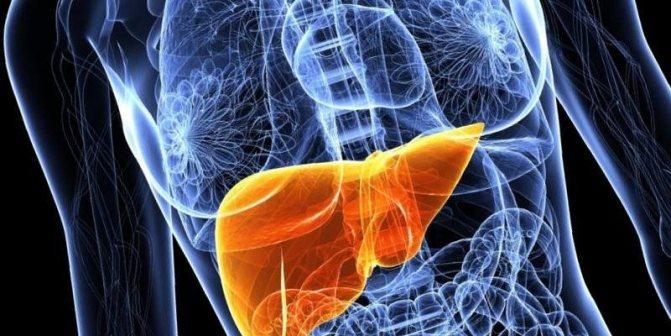 Лікування жирового гепатозу печінкі народними засоби