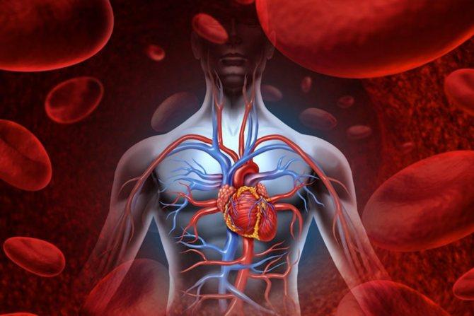 Лінімент бальзамічний прискорюється тканинний кровотік