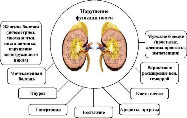 Лонгидаза свічки. Інструкція по застосуванню в гінекології, показання, протипоказання, аналоги