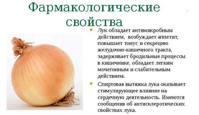 Лук при гастриті: чи можна їсти, вплив на шлунок