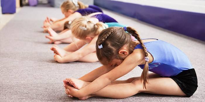 Маленькі дівчатка займаються гімнастикою